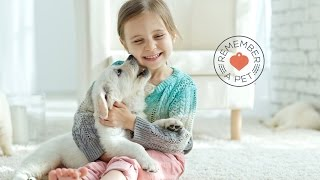 Make a difference with Remember a Pet | Christian Veterinary Mission