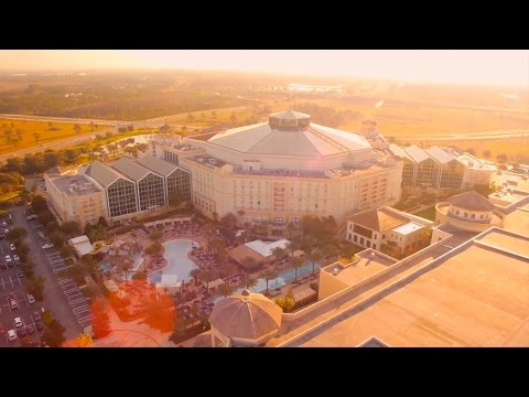 Get to Know Gaylord Palms Resort!