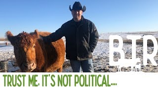 It's Not Political - Weekly Round-up