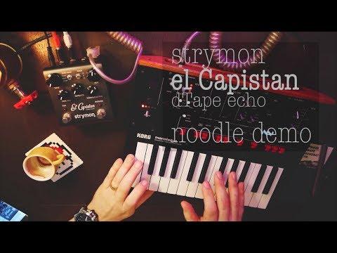 Strymon el capistan - massive synth noodle demo (KORG monologue, volca, reface CP)