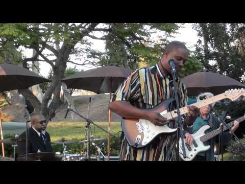 Spring Harp Fest 2011 Stoney B Blues Band
