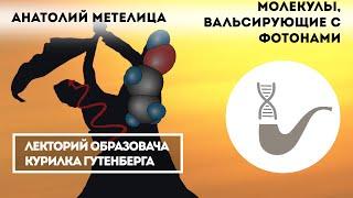 Анатолий Метелица - Коротко о фотохимии