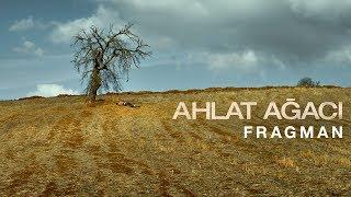 Ahlat Ağacı - Fragman (1 Haziran'da Sinemalarda)
