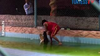 Экскурсия Шоу Крокодилов Египет, Шарм эль Шейх