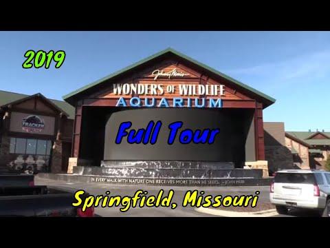 Wonders Of Wildlife Aquarium Full Tour - Springfield, Missouri