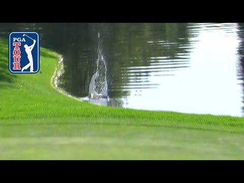 Luckiest Shot Of The Year! Huge Bounce Off The Water For Sungjae Im | WGC Mexico