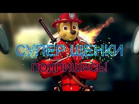 МАША И ХЭЛЛОУИН!!!  Супер Щенки.Маша и медведь новые серии на русском!!!