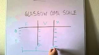 Glasgow Coma Scale Made Easy