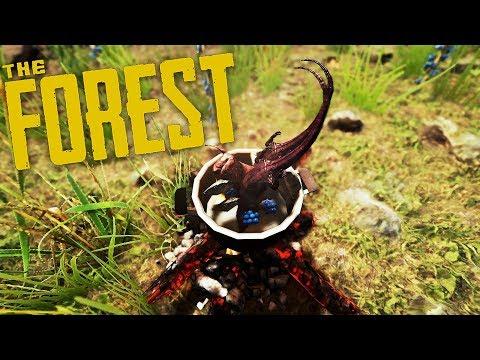 The Forest - Update 0.69 - Moderner Bogen, Kochen nach Rezept, Infektionsgefahr!