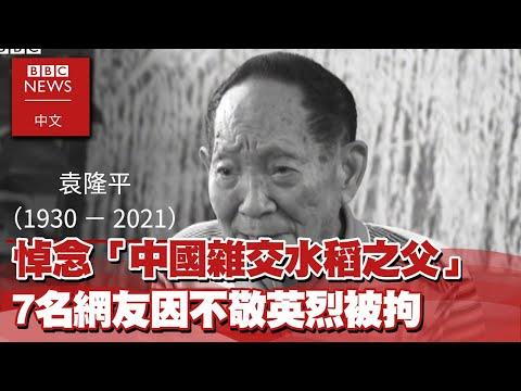 袁隆平逝世:大量民眾悼念「中國雜交水稻之父」 7名網友因不敬英烈被拘-BBC News 中文xEBC東森新聞 @東森新聞 CH51