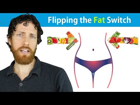 The Science of Vegan Fat Loss