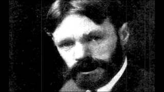 "D H Lawrence ""The Mess of Love"" Poem animation"