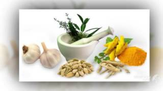 Gold Coast Digestive Health - Best Naturopath Clinic in Gold Coast