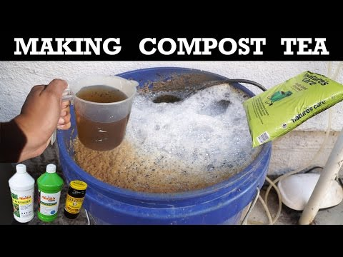 how-to-make-compost-tea---organic-fertilizer-for-your-plants