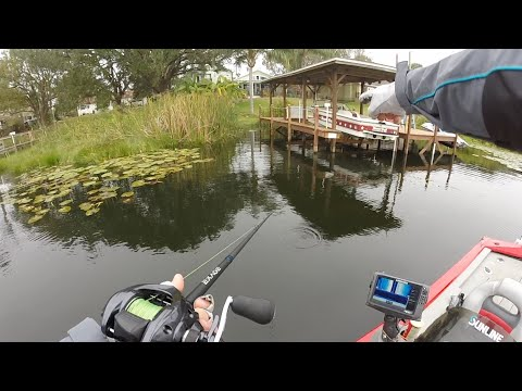 Bass Fishing Downtown Orlando! (FL3)