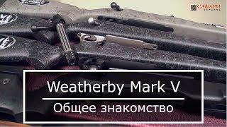 Карабины Weatherby Mark V || Обзор и общее знакомство