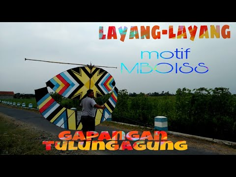 SETING LAYANG-LAYANG GAPANGAN TULUNGAGUNG || KHAS JAWA TIMUR #BUKANANAKKOTA