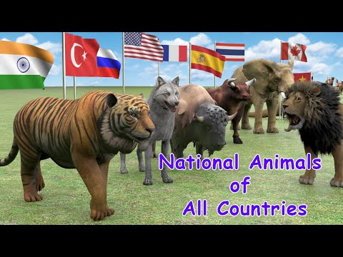 National Animals of Countries | Flags and Countries name With National Animal | #Flags