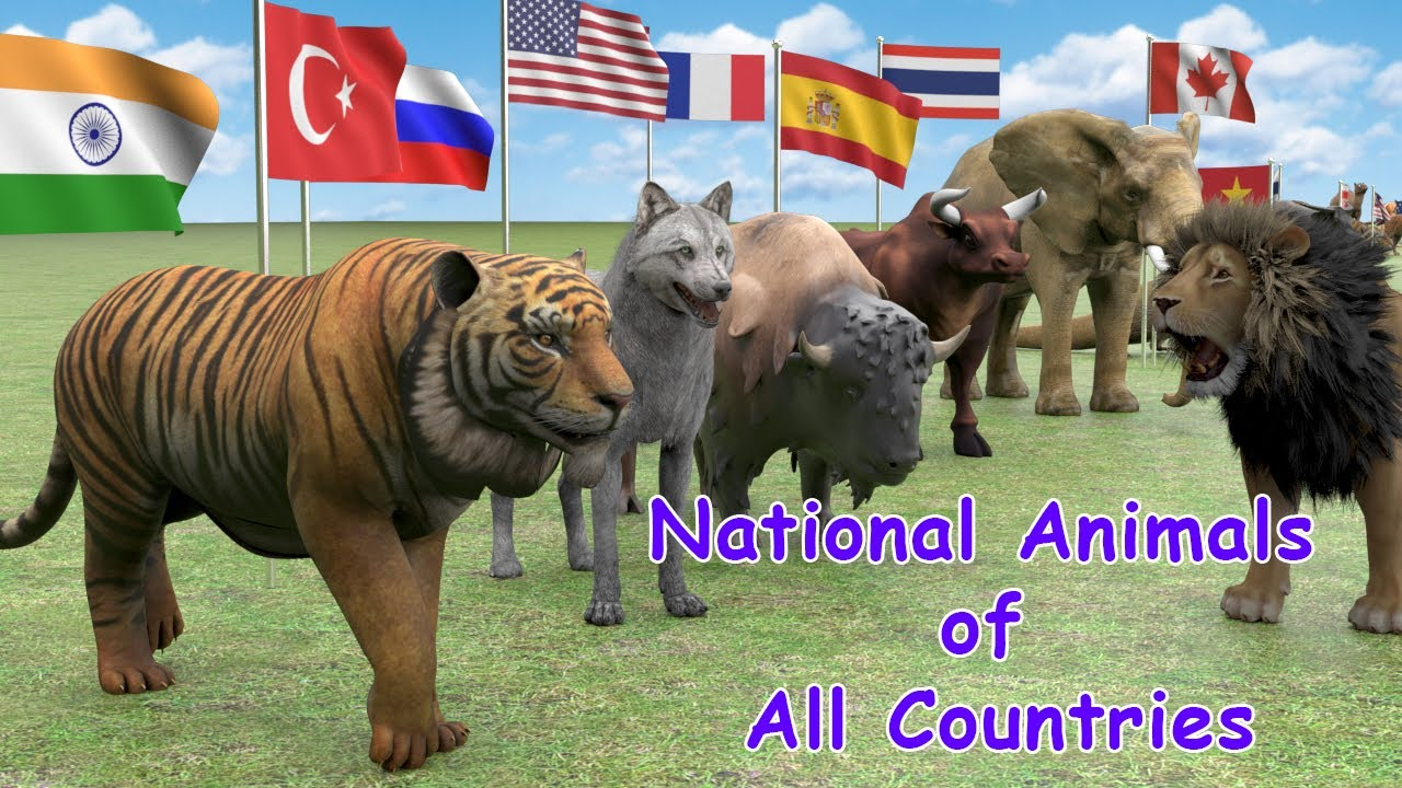 Download National Animals of Countries | Flags and Countries name With National Animal