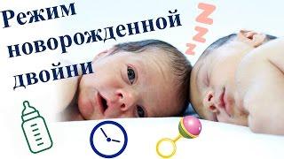 Режим новорожденной двойни | Tanya's Twins