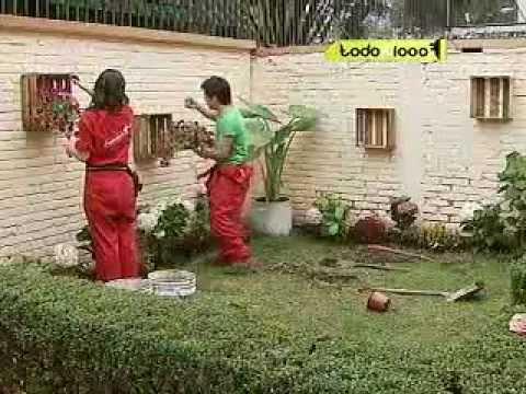 C mo remodelar tu jard n 3a parte youtube for Como remodelar tu casa