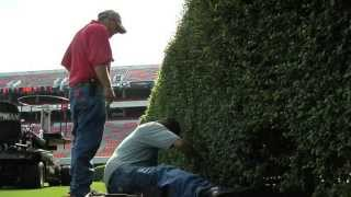 """""""Between The Hedges"""" (Georgia Farm Monitor TV Feature)"""
