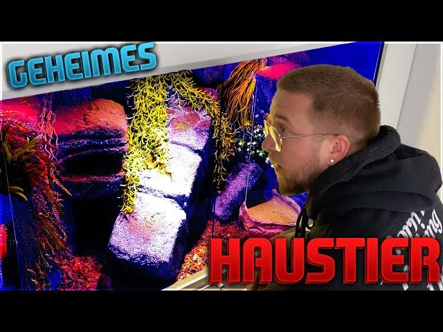 Timo trifft auf Simons GEHEIMES HAUSTIER 😂😱 Das neue XXL Terrarium ist da !! Vlog