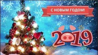 Поздравления с Новым Годом 2019, год Свиньи