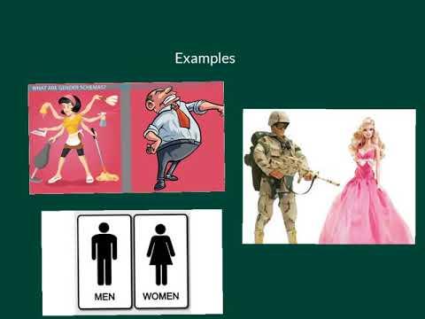Gender Schemas