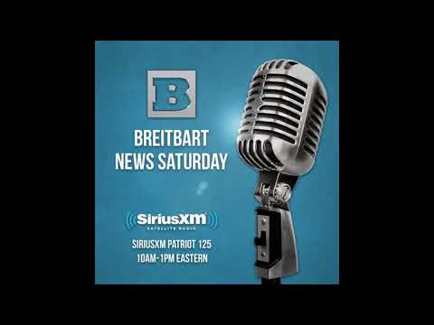 Cassidy discusses gun violence, Russian meddling, healthcare, debt, immigration on Breitbart News