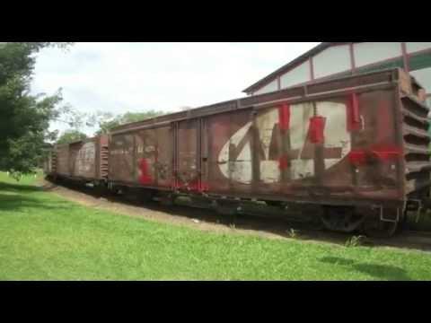 Trem Guaramirim Santa Catarina