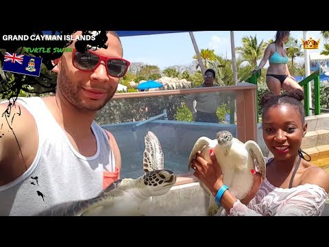 Grand Cayman Islands Adventure with Sea Turtles🌴:Royal Caribbean Brilliance of the Seas