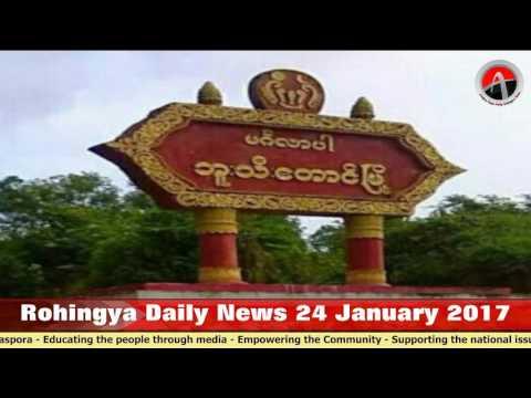 Rohingya Daily News 24 January 2017 Arakan Times Myanmar ( Burma )
