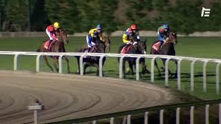 Vidéo de la course PMU GRAND NATIONAL DES ANGLO-ARABES A 12.5 %