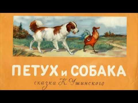 """Сказка """"Петух и собака"""""""