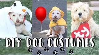 How to Make a Zero Dog Costume