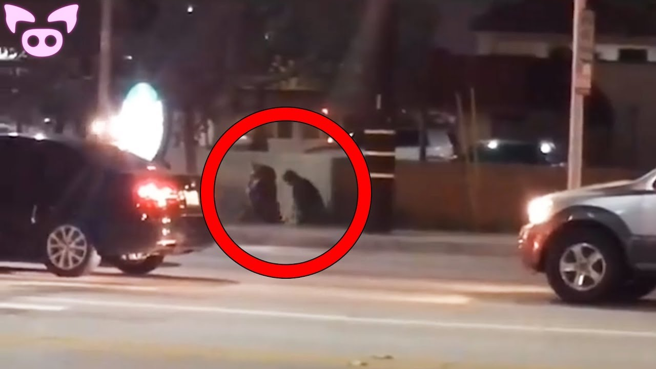 Download Scary La Llorona (The Weeping Woman) Sightings Caught on Camera