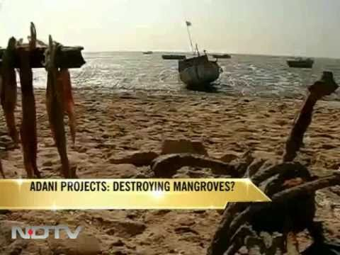 Adani projects: Eating into the sea?