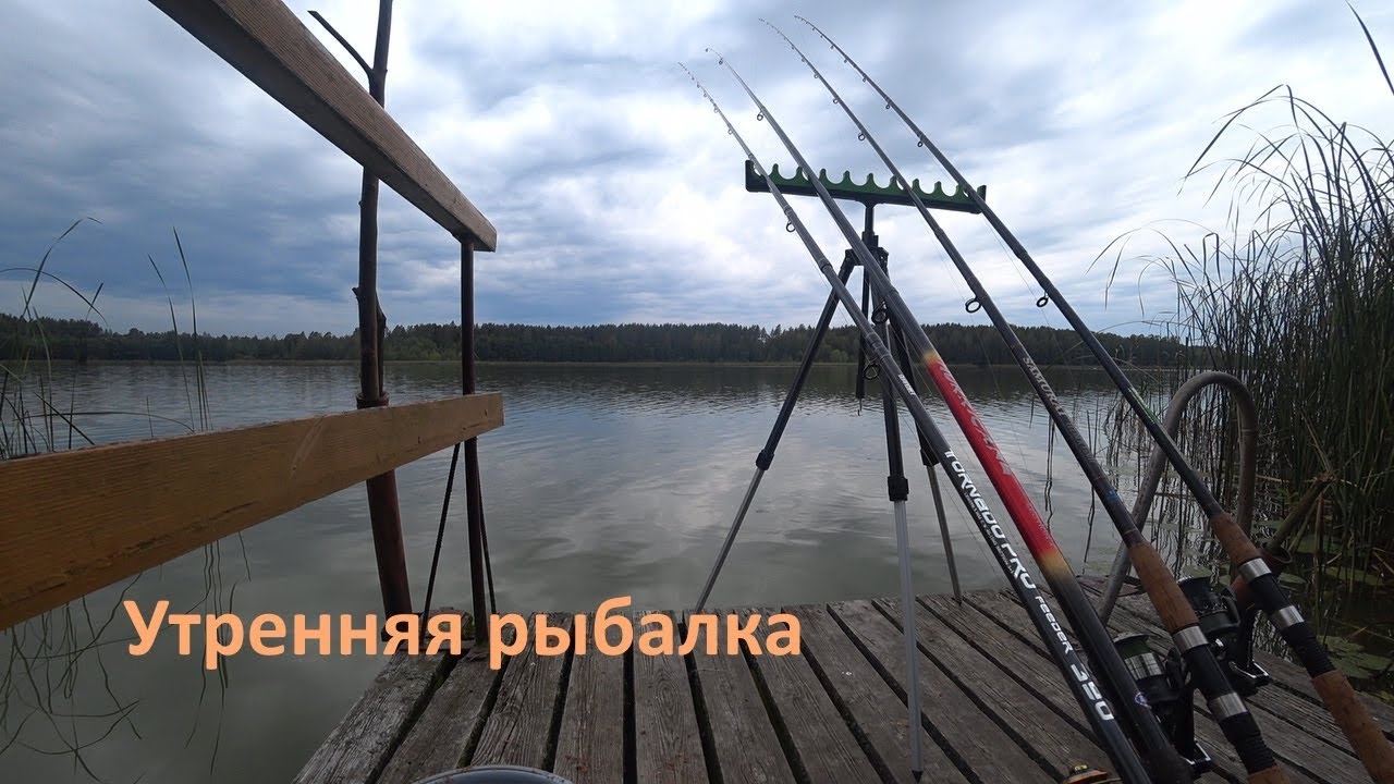 Где отдохнуть в Латвии с детьми (База отдыха «Вирогна»)Утренняя рыбалка!а!