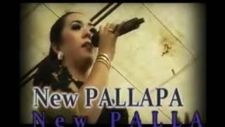 lagu india di koplo.in new pallapa Dwi Ratna  Terenie