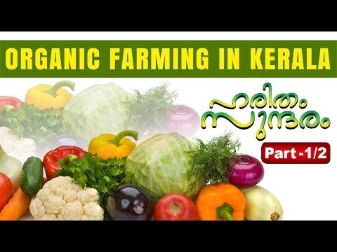 Organic Agricultural farming in Kerala Part 01 | Haritham Sundaram 01-04-2016 | Kaumudy TV