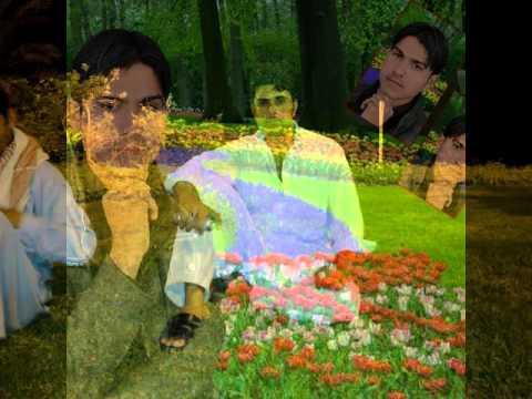 S  Rashid jani