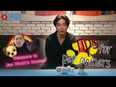 Kim Jae Wook on Tips For Pet Owners | Viki Exclusive Interview [Eng Sub]