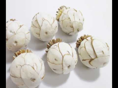 Pineapple Sola Wood Flower Handmade Reed Diffuser Decor Inn Fragrance DIY Wholesale Lot Set #SW002