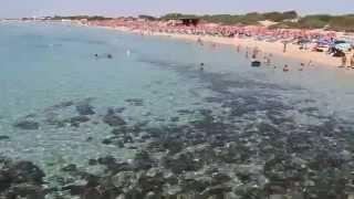 Le Spiagge del Porto Cesareo Camping