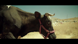 Free Range - a film by Bass Bréche (Trailer) سايبة - فيلم لباس بريش