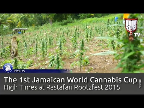 Jamaica's Best Weed Party, 1st Ever World Cannabis Cup, Negril. HighTimes - Smokers Guide TV Jamaica