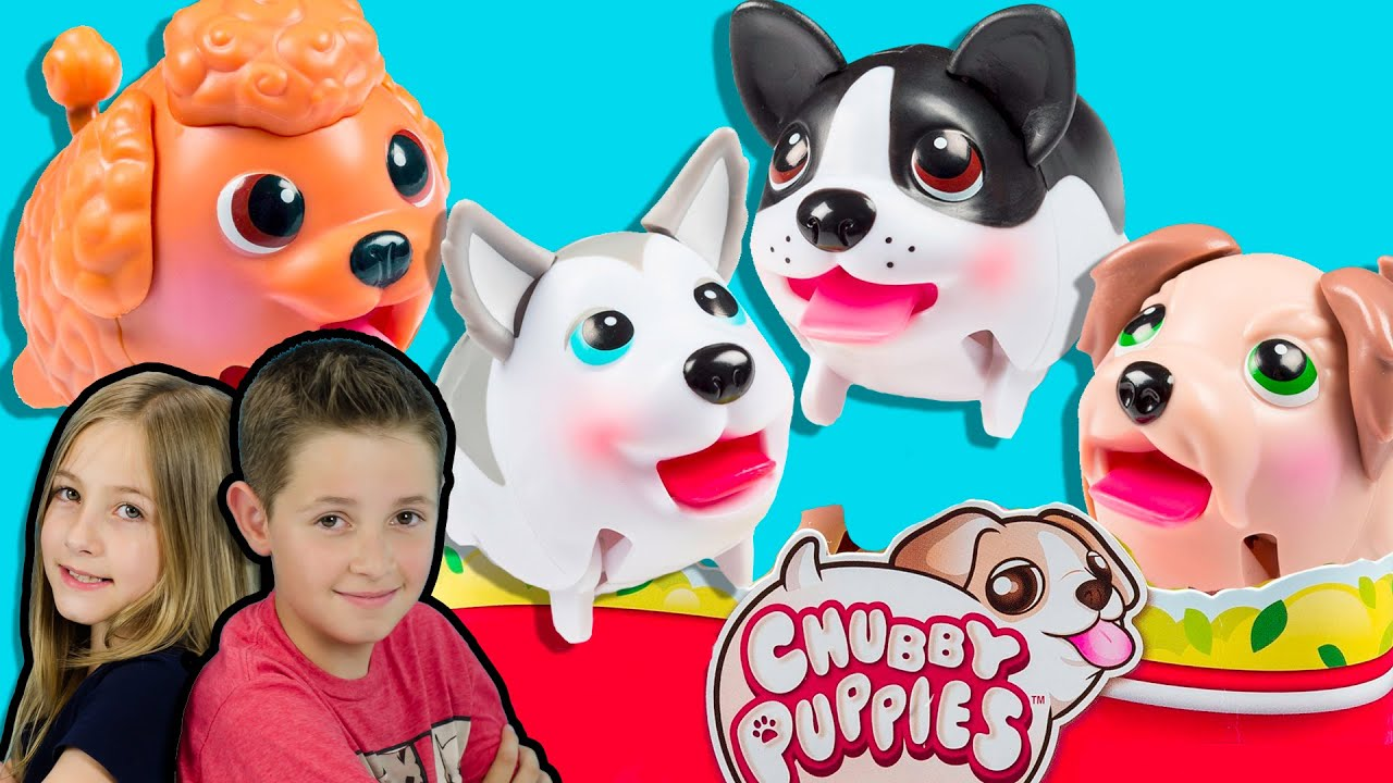 4 CHUBBY PUPPIES NEW CUTE PETS TOYS Puppy Dogs Husky Terrier