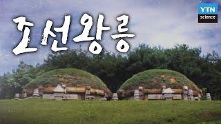 조선왕릉, 산 자와 죽은 자의 교감 / YTN 사이언스