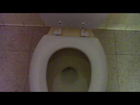 175 Block Logo American Standard Tribor Toilet Doovi